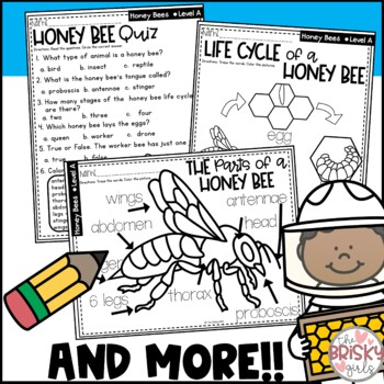 Honey Bees, Honey Bee Life Cycle, Honey Bee Unit