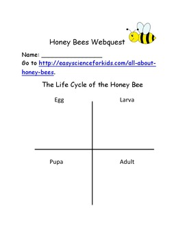 Honey Bees - A Webquest