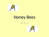 Honey Bees -Day 3 &4