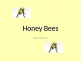 Honey Bees - Reading street