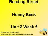 Honey Bees SmartBoard Companion 1st First Grade