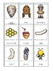 Honey Bees themed 3 Part Matching Game.  Printable Preschool Game