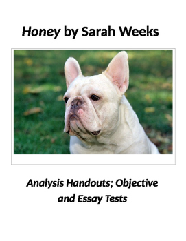 Honey by Sarah Weeks Tests and Analysis Handouts