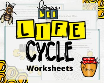 Printable Bugs: All About Bees