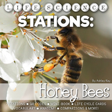 Honeybee Unit Life Cycle Stations- Montessori Cards, Mini-Book, and More