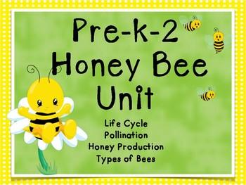 Spring Life Cycles Honeybees