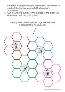 Honeybees – Collaborative Honeycomb Template – Research and Write Facts