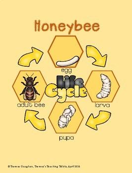 Honeybees Literacy, Science, Math, and Art Activities