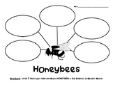 Honeybees Nonfiction Graphic Organizer