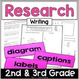 Writing: Research Writing (The Write Stuff)