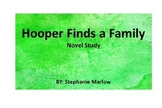Hooper Finds A Family Discussion comprehension Questions/N