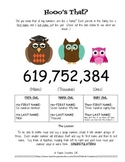 Hoo's That? |  Cute Way of Teaching Place Value Written Fo