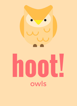 Hoot! A mini unit on owls.