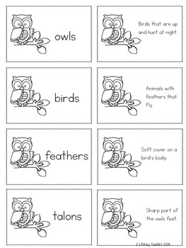 Hoot, Hoot! Hoot, Owls: CCSS Aligned Leveled Reading Passages and Activities
