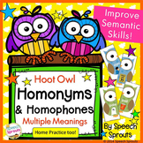 Hoot Owl Homophones and Homonyms Games and Worksheets