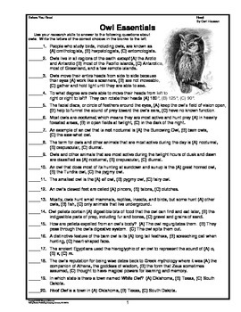 Hoot    Prereading Activities, Vocabulary Study, Short Answer Questions