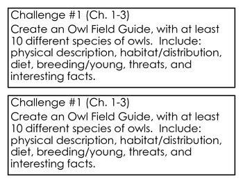 """""""Hoot"""" by Carl Hiassen, Project Challenges ~ Research & Writing Activities"""