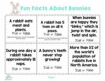 Bunny Puppet & Fun Fact Cards, Math, Science & Literacy Activities for APRIL