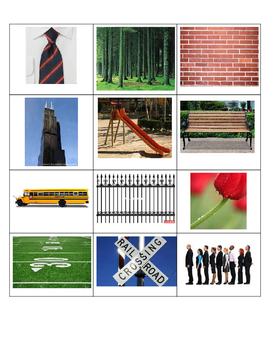 Horizontal, Vertical, and Diagonal Line Sort using real life pictures
