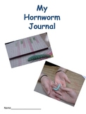 Hornworms Journal- a great math, science, hands-on activity!