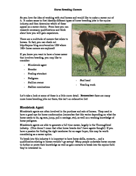 Horse Breeding Careers Resource