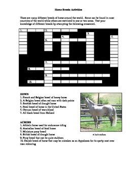 Horse Breeds Activities