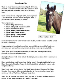 Horse Bucket List Activity