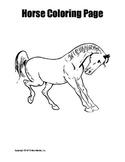 Horse Coloring Page Bundle
