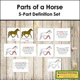 Horse Definition Set (Red) - Montessori Nomenclature