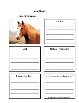 Horse Fill in the Blank One Page Animal Report
