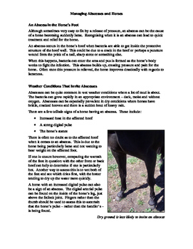 Horse Health Package #2