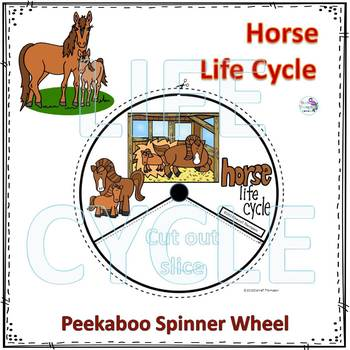 Horse (Life Cycle Spinner)