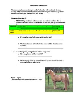 Horse Numeracy Activities