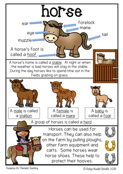 Horse Poster Anchor Chart