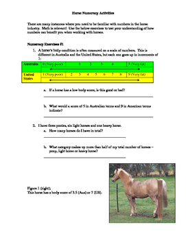 Horse Related Literacy and Numeracy Package