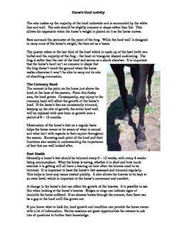 Horse's Hoof Activity