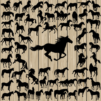 62 Horse Vector Silhouette, SVG, DXF, PNG, EPS, Cutting File, Vinyl, Cut Machine