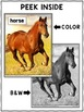 Close Reading Horse Activities