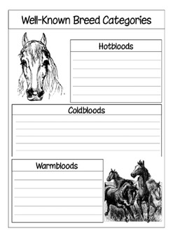 Horses: A Thematic Notebooking Unit
