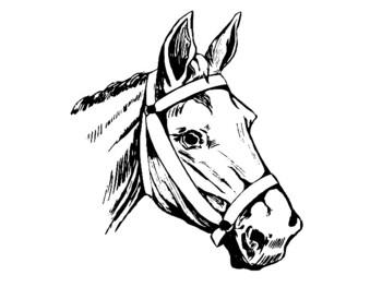 Horses Clip Art and Templates