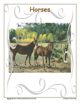 Horses - Differentiated Blooms Enrichment Unit
