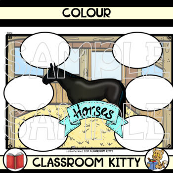 Horses : Graphic Organisers