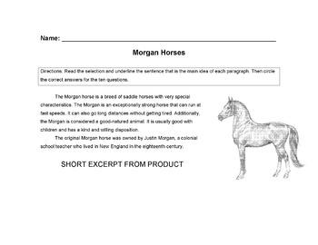 HORSES: Morgan Horse Worksheet + 14 Main Idea, Vocabulary, Read Comprehension Qs