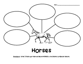Horses Nonfiction Facts Graphic Organizer