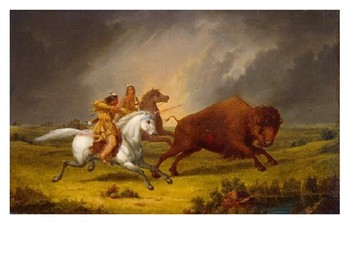 Horses and the Plains Indians Source Analysis Activity