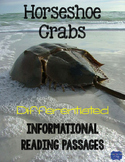 Horseshoe Crabs {Differentiated Reading Passages & Questions}
