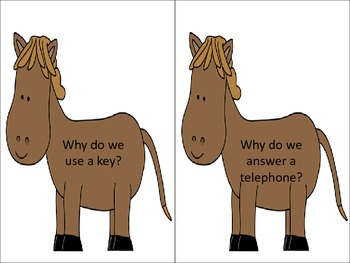 "Horsing Around With ""Why"" Questions"
