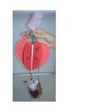Hot Air Balloon Valentine Heart Card