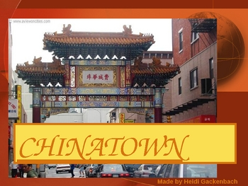 "Houghton Mifflin:  2nd Grade ""Chinatown""  Vocab"
