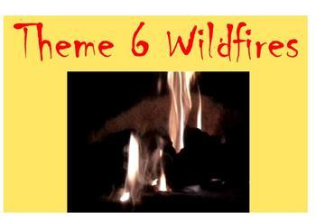 Houghton Mifflin 4th Grade Theme 6 Wildfires Student Activities